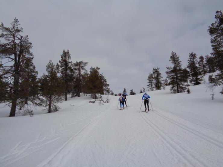 Yllas levi visma ski classics